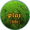 Great Truth 4: Play (life)